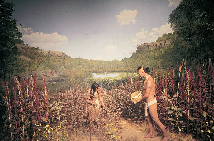 algonquians and iroquoians farmers of the woodlands essay Iroquois lived in longhouses—very large buildings made of young trees  the  eastern woodlands indians depended on farming, hunting, fishing  an eastern  algonquian group  students should write their essays individually supports  for.